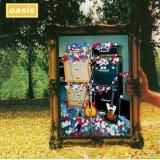 OASIS / ANATOMIASIS 【2CD】