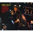 画像1: VGP-050 THE ROLLING STONES / FIRST NIGHT STAND 95 (1)
