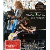 LED ZEPPELIN 1977 WHITE ROSE 3CD
